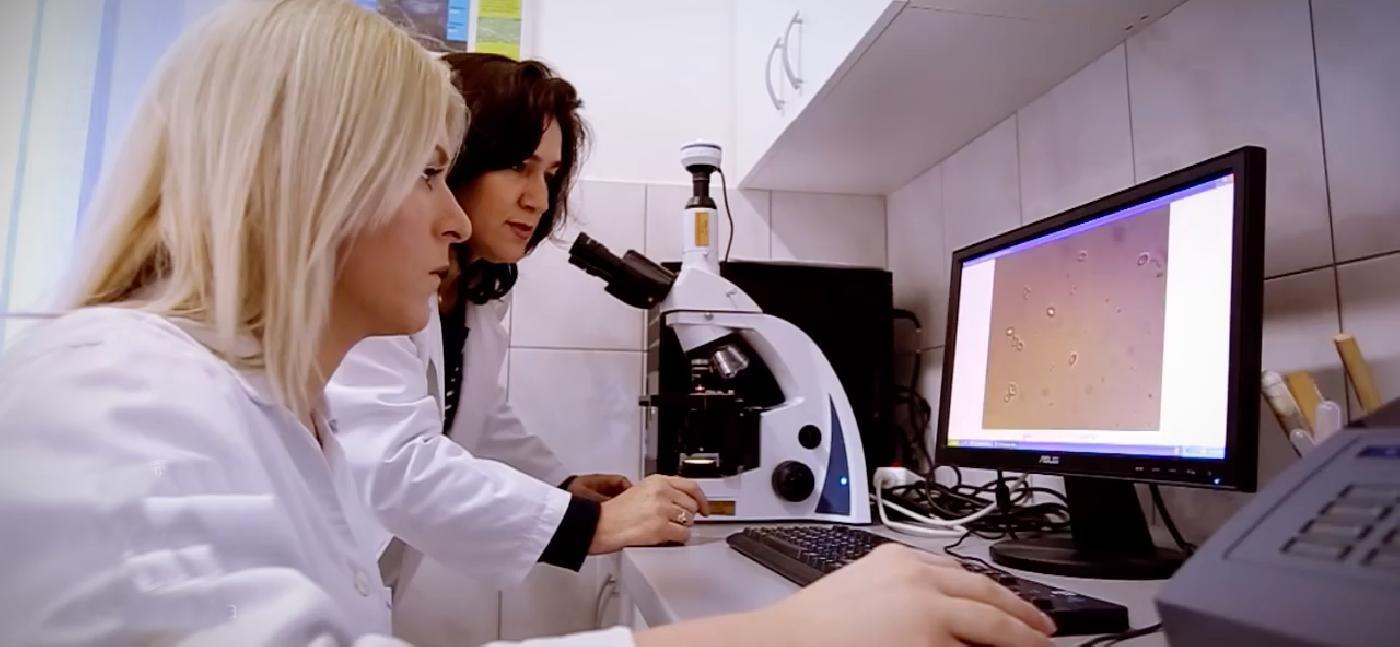 Istraživački profil