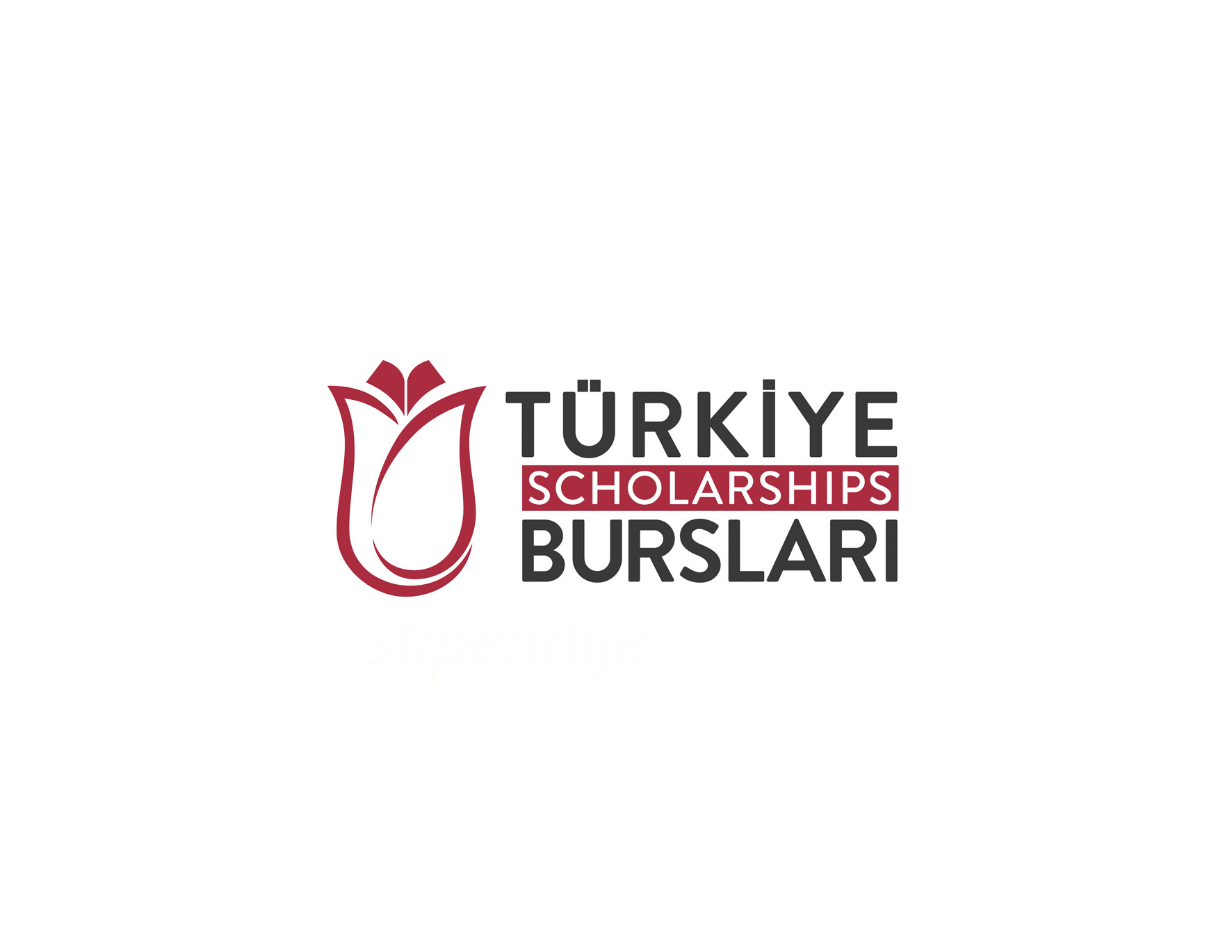 Stipendije za studij u Turskoj