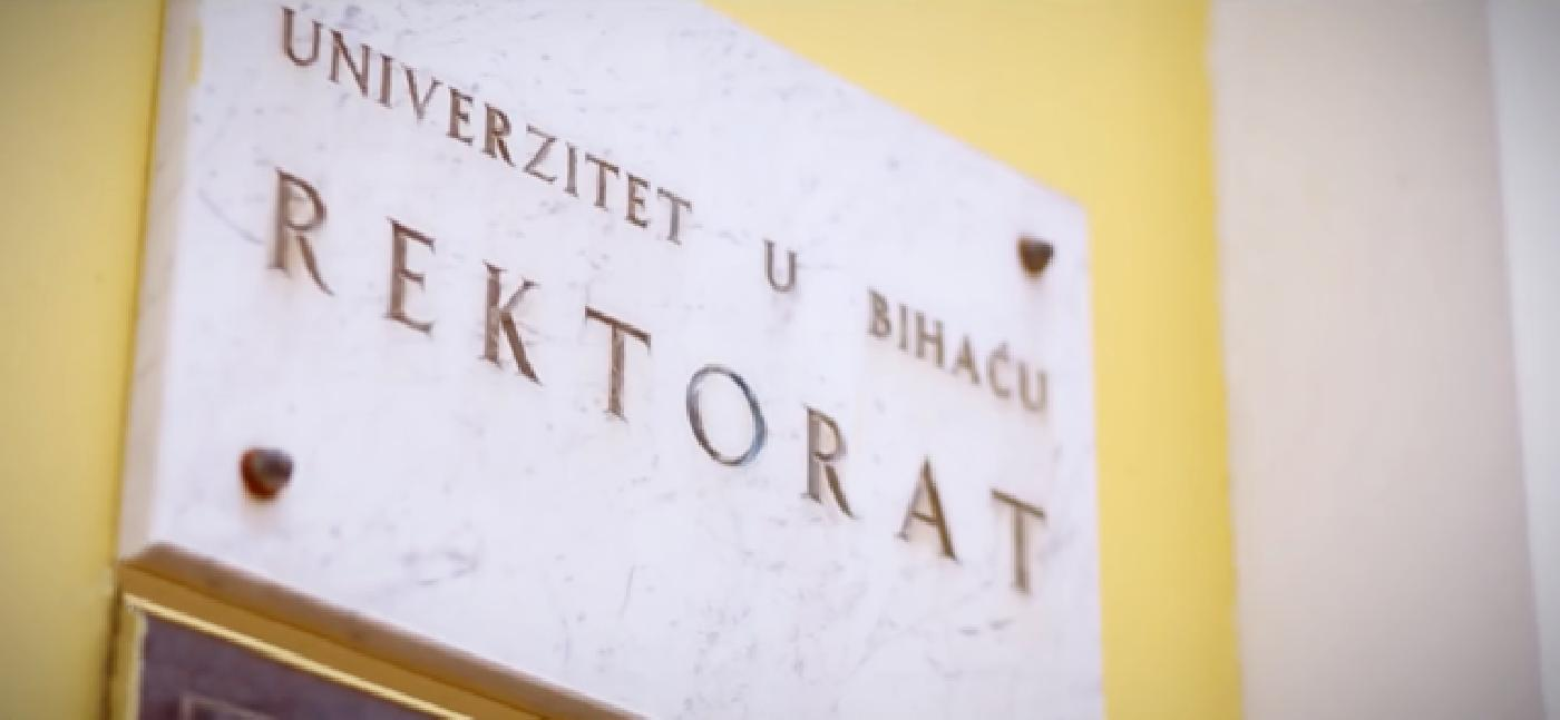 Portrait of the University